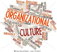 organisatie cultuur
