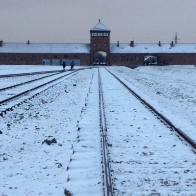 Birkenau spoor poort