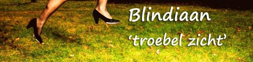 blindiaan troebel zien