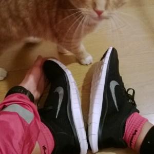 Même mon chat les aimait ...