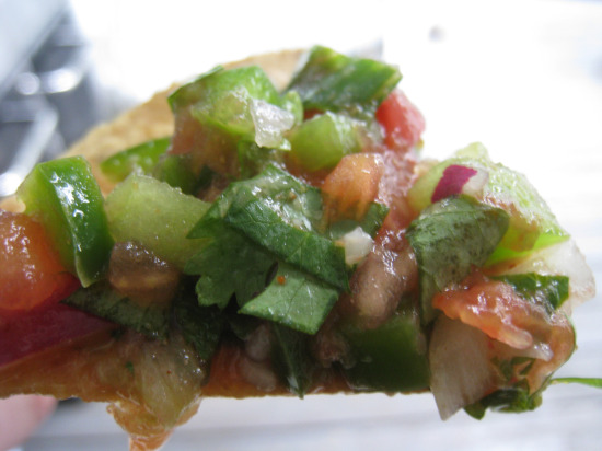8.10 salsa chip