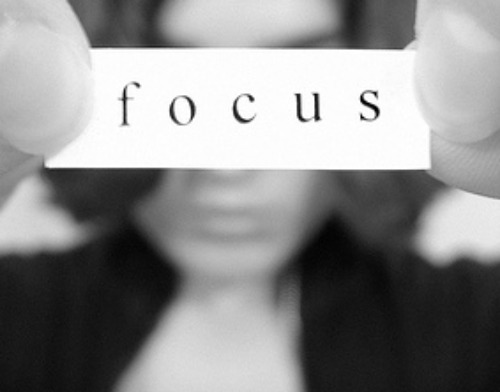 Focus: www.flickr.com/photos/56387066@N00/1810357551
