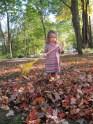 Leaves!