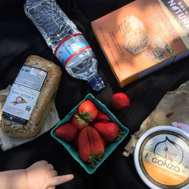 WIAW | Picnic At The Ladybug Park