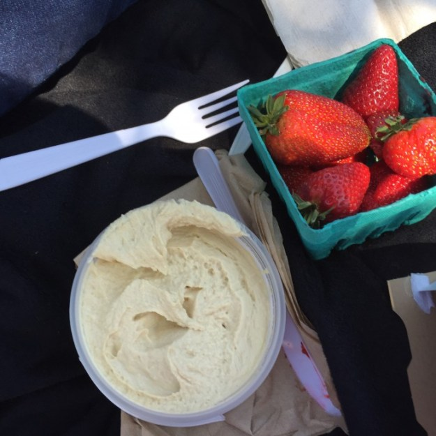 WIAW | Picnic At The Ladybug Park | Hummus