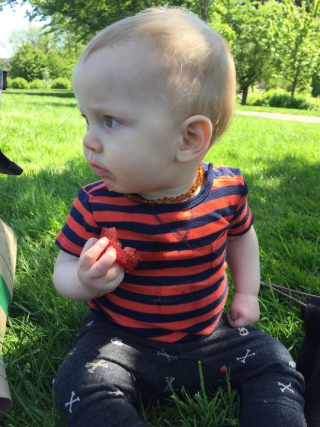WIAW | Picnic At The Ladybug Park | strawberries