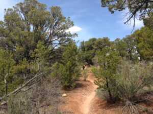 Ragnar Trail Zion Yellow Loop