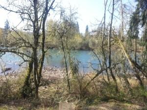 Mackenzie River Photo Credit: Amber Corsen