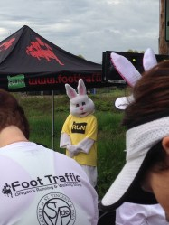 Where else can you party with a rabbit in a cool shirt???