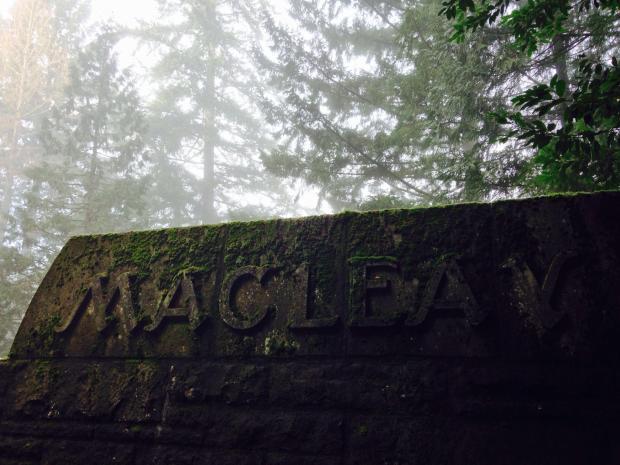 Macleay Trailhead, Forest Park, Portland, Ore.