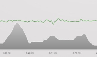 Long run elevation chart - half marathon training cycle