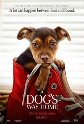 Movie Review - A Dog's Way Home