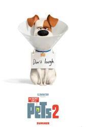 Movie Review - The Secret Life of Pets