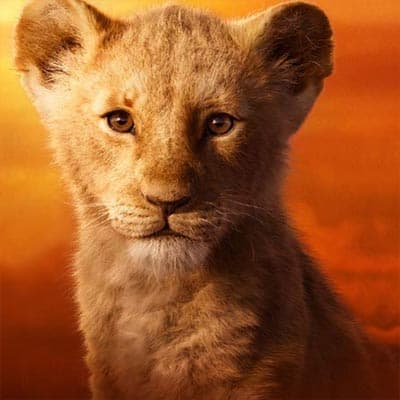 Actor Voices For Every Lion King Character 2019