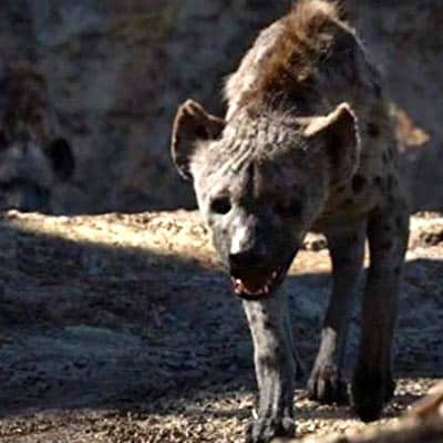 Lion King hyena Shenzi