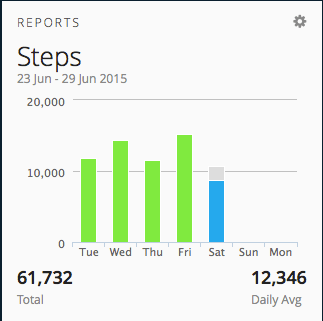 Weekly Step Report on Garmin Connect
