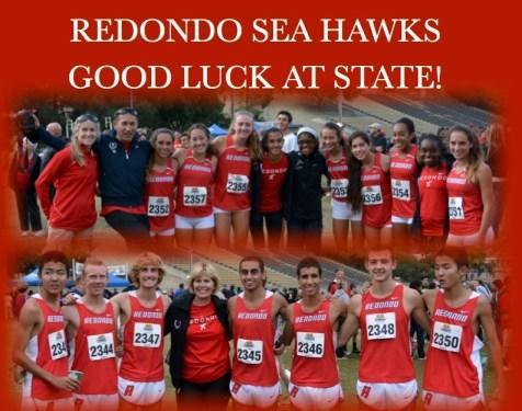 GO SEA HAWKS!!!