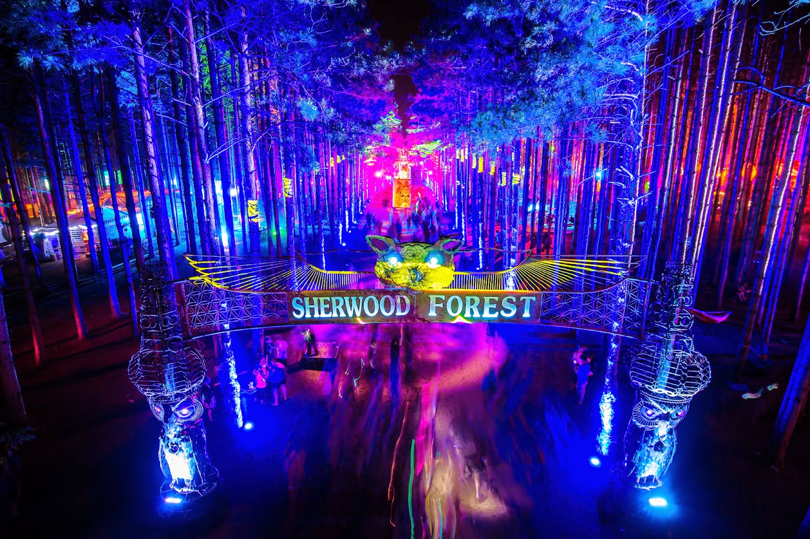 Trance Girl Wallpaper Electric Forest Organizers Bring New 4 Day Camping