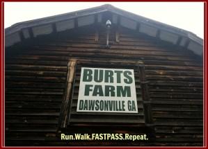 Pumpkin Patch Time! Burts Farm in Georgia