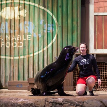 Photo Source Georgia Aquarium Website