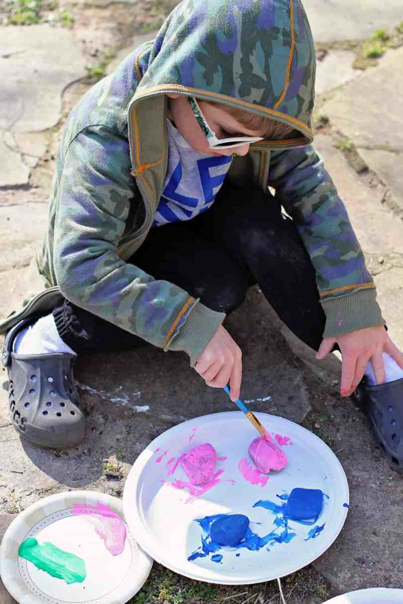 painting rocks nature craft
