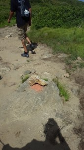 Orange Painted Rock- indicates we should take the trail to the left to go back to the road.