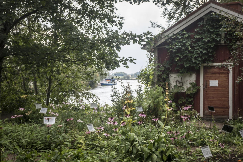 Yrttipuutarha on Pappilajoen varressa.