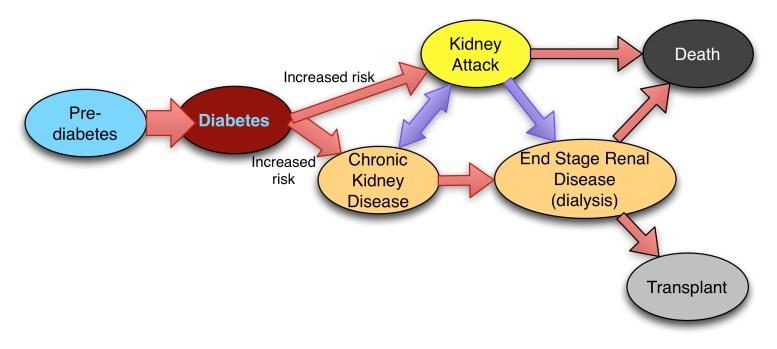 diabetesaki
