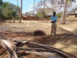 Local woman on Kirepwe Island making makuti thatch for roofing from coconut tree