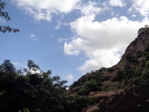 Drama in the skies above the cliffs where the eagle soared with a snake in its talons -copyright Rupi Mangat