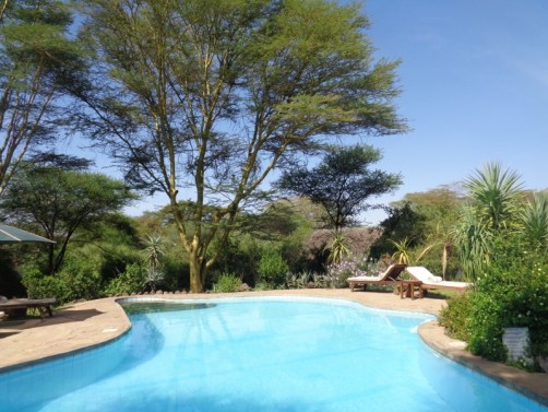 Cool by the pool- Tortilis Camp in Amboseli, - Copyright Rupi Mangat