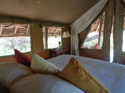 Great views from the bed of the wild plains of Africa - Tortilis Camp in Amboseli, - Copyright Rupi Mangat