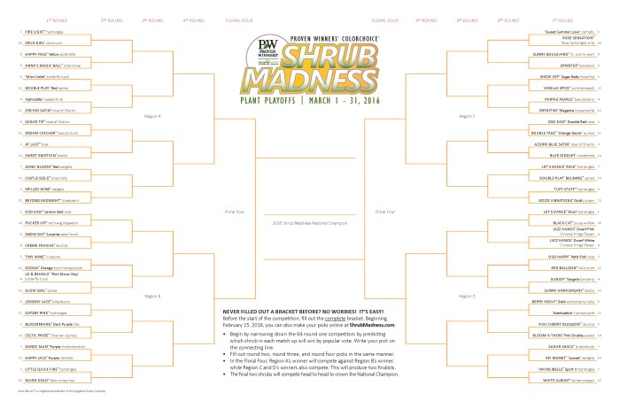 2016_shrub_madness_bracket
