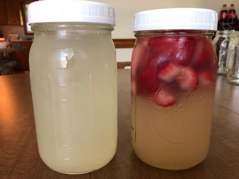 Freshly Squeezed Homemade Lemonade