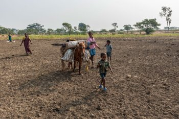 Left: Young Vijay and Nagaraju accompanying their horse (the animals are used for carrying heavier loads), along with their father Neelappa Chachdi. Right: Setting up home in a new settlement after days on the road is an important task. Children chip in too. Vijay is only five, but pitches in readily