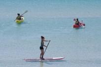 "My ""kids"" kayaking and paddleboarding"