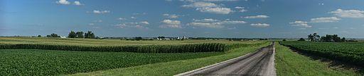 Corn_fields_near_Royal,_Illinois