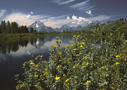 512px-Oxbow_Bend_outlook_in_the_Grand_Teton_National_Park