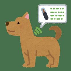 犬マイクロチップ