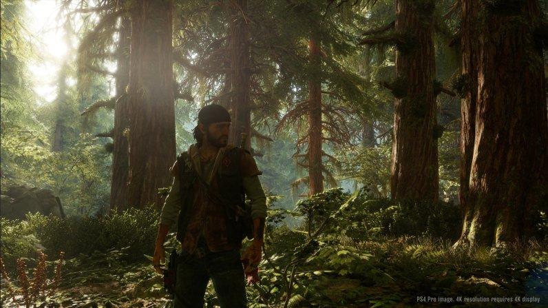 Idyllisch doch hinter jedem Baum könnte eine Bedrohung lauern.