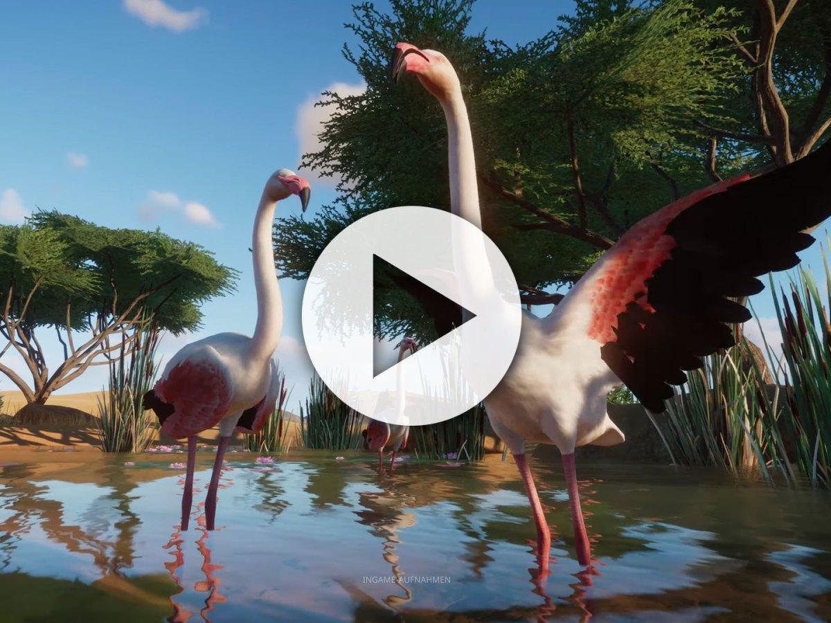 rushBfast: Trailer der Woche - Planet Zoo