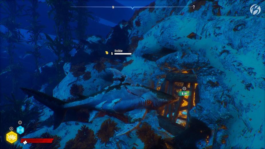 Maneater - Die Riffe sind von komplexen Höhlensystemen durchzogen.