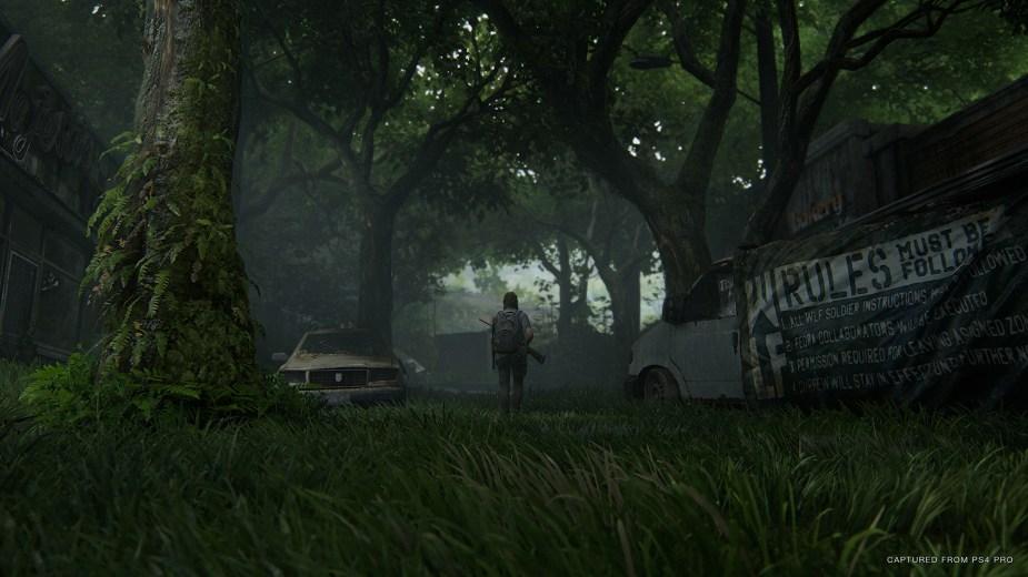 Quelle: SIE - The Last of Us Part II - So schön grün!