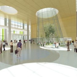 Rendering of planned four-season terrarium in the Edward A. Brennan Entrance Pavilion.