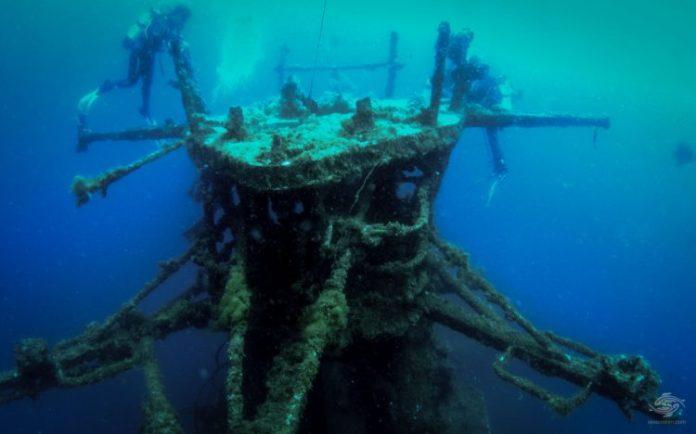 Busselton Jetty Australia scuba diving7 swm