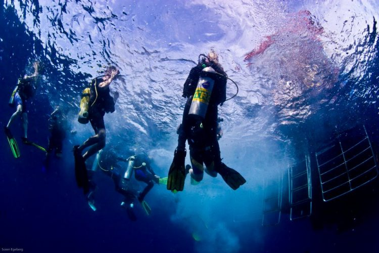 Diving with Nitrox? Here's What You Need to Know to Dive