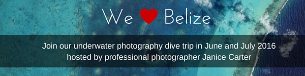 Belize_in_content_banner