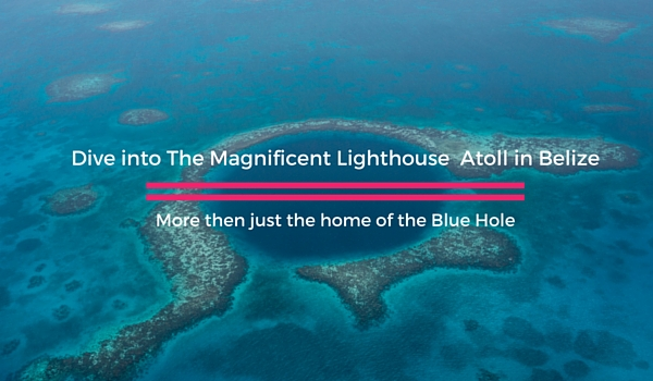 Dive_the_lighthouse_atoll_in_belize