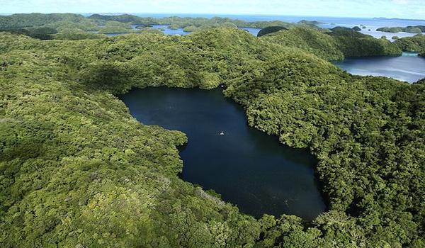 Palau Jellyfish Lake aerial