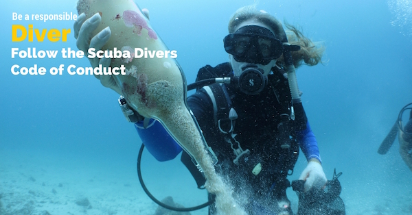 download your scuba dive checklist